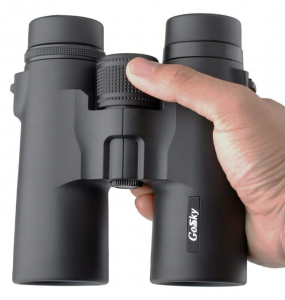 Professional Binoculars for Bird